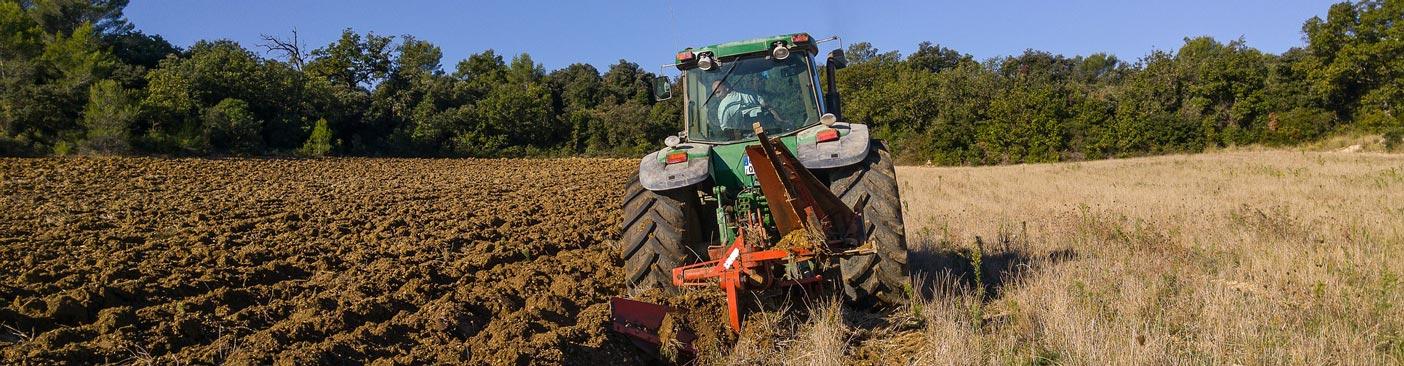 Agrarische en groene sector gaat voor minder bedrijfsongevallen | Letselschade Test